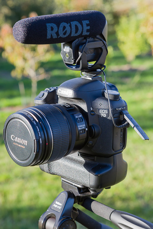 Compact shotgun microphone (Rode VideoMic Pro) on a Canon EOS 7D DSLR