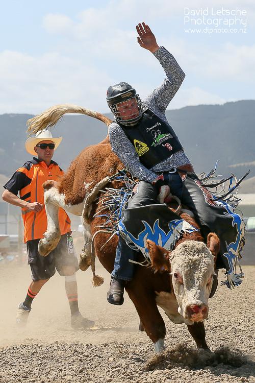 Bull riding at Richmond Rodeo 2014