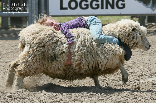 There are events for the kids too at the rodeo.