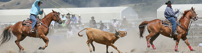 Photos from the 2014 Richmond Rodeo